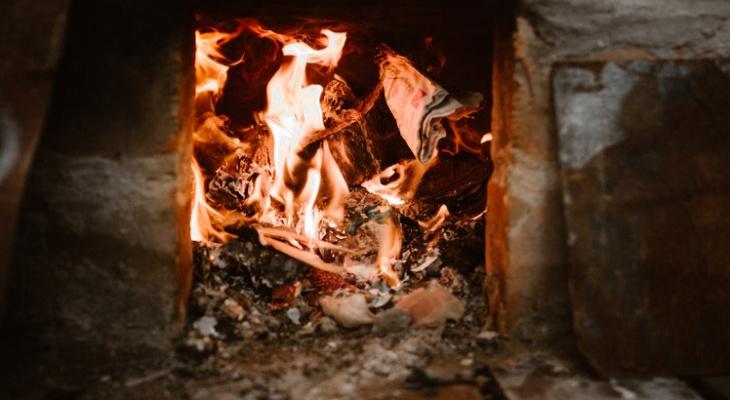Жесть! В Марий Эл женщина заживо сожгла кошку в печи
