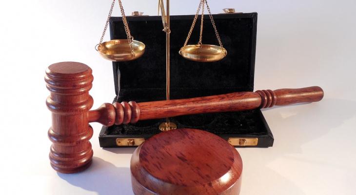 Йошкаролинца, который прокатил пристава на капоте, ждет суд