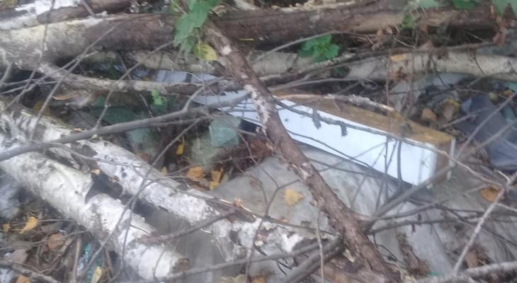 В Марий Эл проверят свалку со строительным мусором