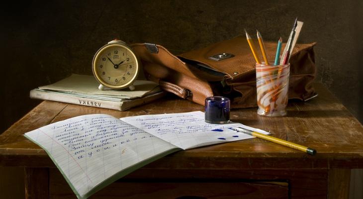 Смогут ли йошкаролинцы ответить на вопросы из школьной программы?