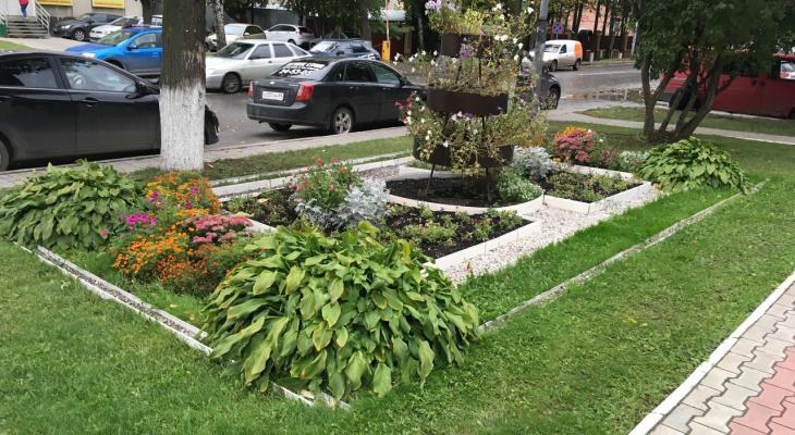 В Йошкар-Оле выбрали сразу несколько «цветущих» зданий