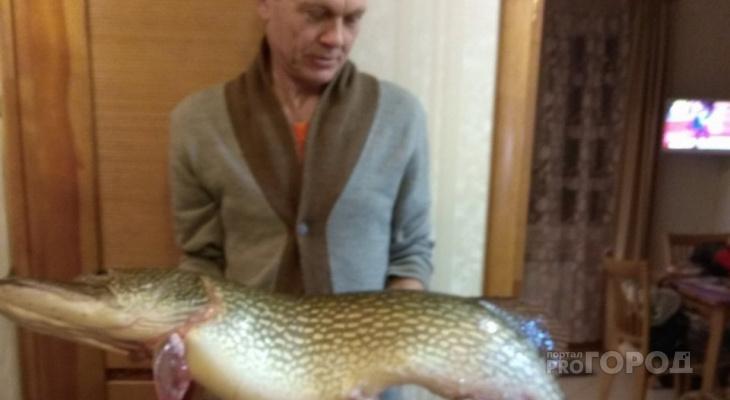 «Ловись рыбка большая»: йошкаролинец поймал необычную щуку