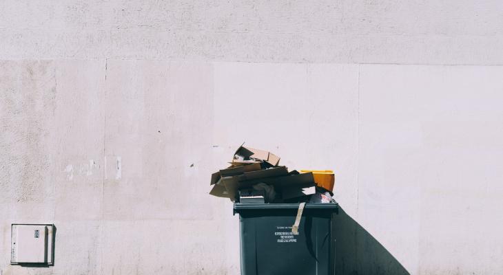 Йошкар-олинский общественник прокомментировал слова президента о мусорных реформах