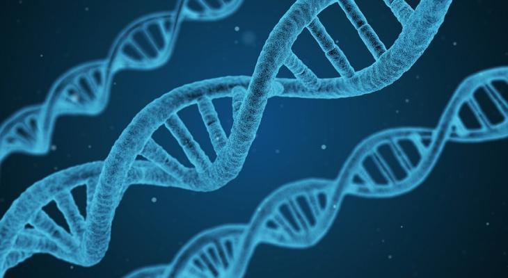 Мировые новости: ученые доказали связь между алкоголем и раком
