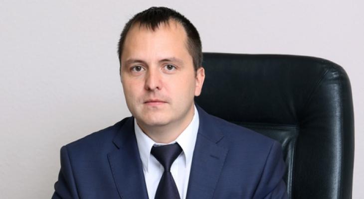 Мэр Йошкар-Олы рассказал, сколько заработал за год