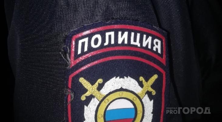 Йошкар-олинские «жрицы любви» попросили Путина о защите