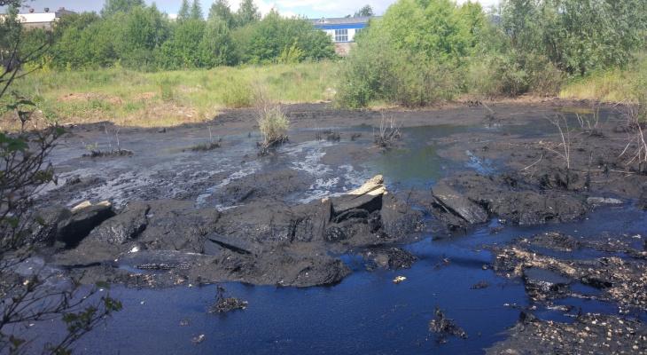 Стало известно, какую опасность несет «мазутное озеро» в Йошкар-Оле