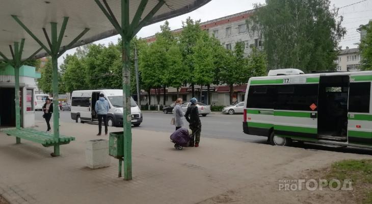"""""""Упала и получила травмы"""": в пригороде Йошкар-Олы ищут свидетелей ДТП"""