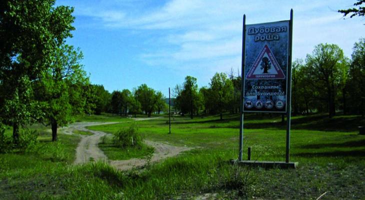 «Город заиграет новыми красками»: в Волжске обновляют парки и тротуары
