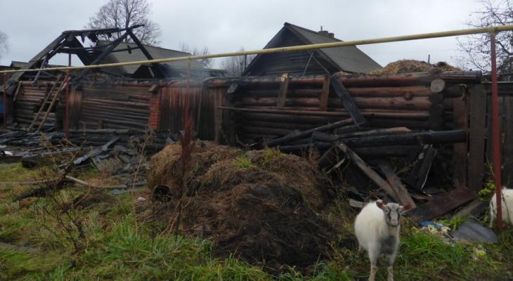 В Марий Эл бойцы спасли от огня козочек и овечек