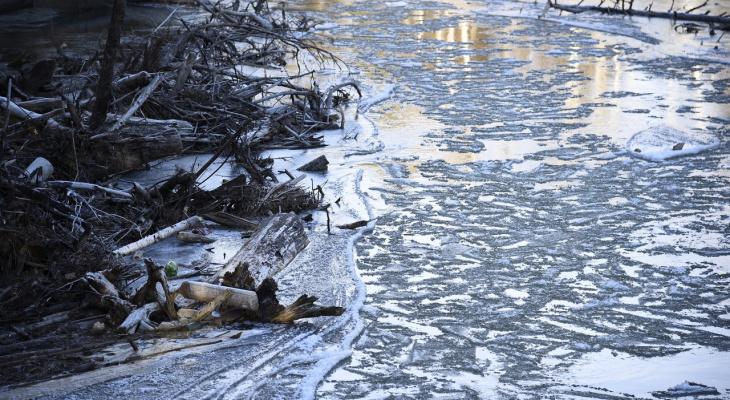 «Зима близко»: на Йошкар-Олу надвигаются морозы