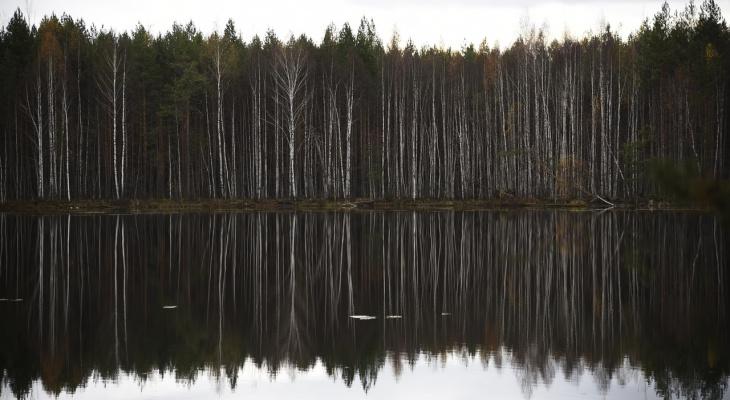 «Доносится рев»: мистическое озеро в Марий Эл «засветилось» на федеральном канале
