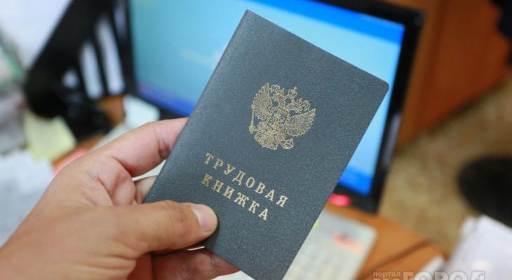 Госдума приняла закон о введении электронных «трудовых»
