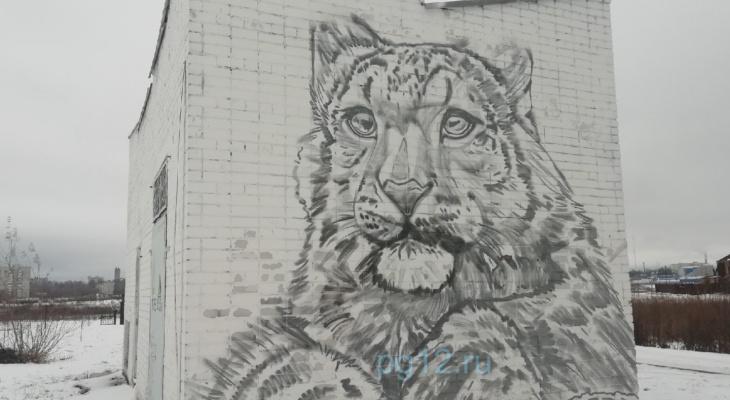 В Йошкар-Оле появилось невероятное граффити краснокнижного животного