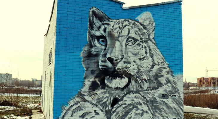 В Йошкар-Оле граффити краснокнижного животного обрело краски