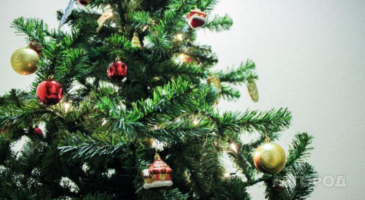 «Праздник не приходит»: йошкаролинец украл у бывшей девушки елку, игрушки и люстру