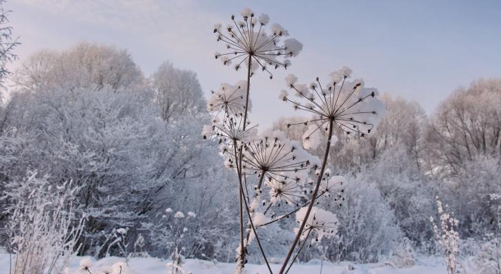 МЧС предупреждает о сильной метели в Марий Эл