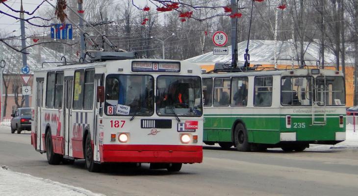 Йошкаролинцы экономят на проезде в троллейбусе