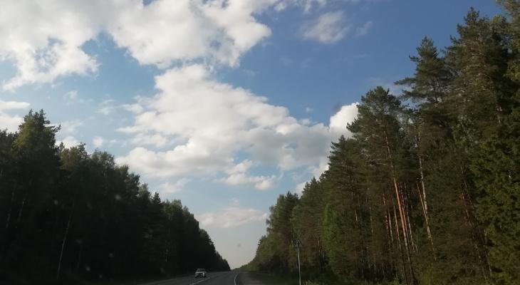 Летом отремонтируют участок Казанского тракта у Куяра в Марий Эл