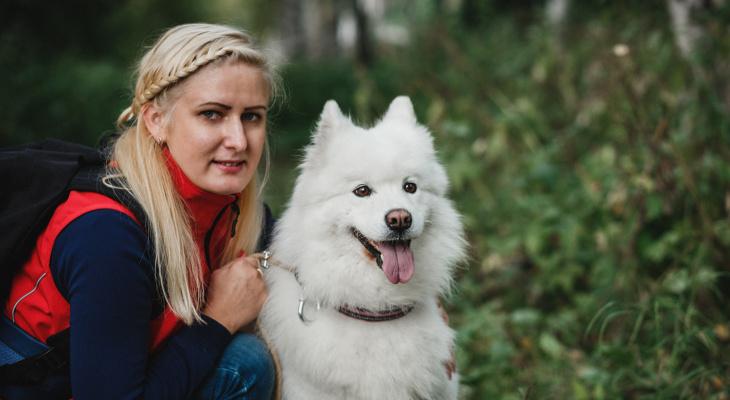 Йошкар-Ола: Немного о собачьей гигиене