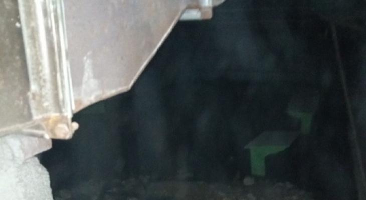 «Здесь можно давать занятия по дайвингу»: в одной из школ Марий Эл затопило подвал