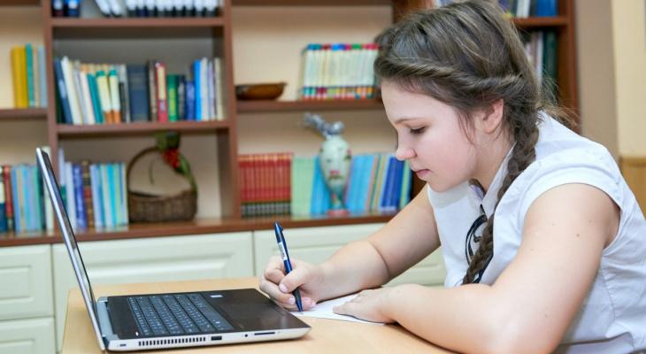 В Йошкар-Оле распространяется фейк о досрочном завершении учебного года