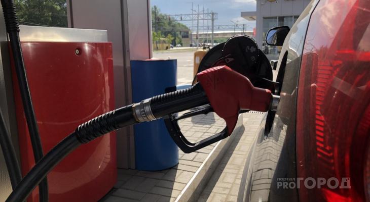 Жители Марий Эл пожаловались на рост цен на топливо