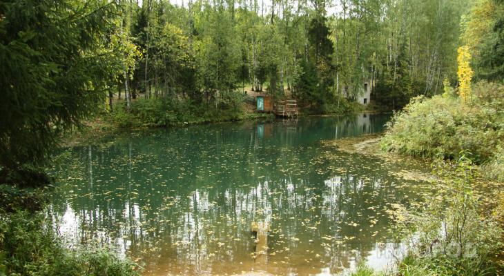 Житель Марий Эл утонул в сельском пруду