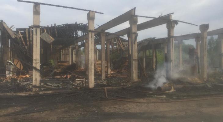 Появились подробности ночного пожара на пилораме, где сгорел житель Марий Эл