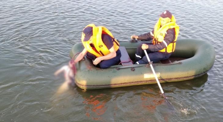 Спасатели подняли со дна тело жителя Марий Эл, утонувшего рядом с плотиной