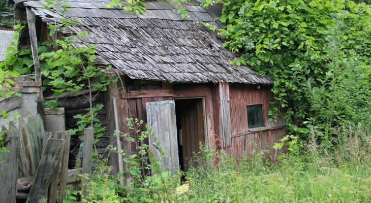 Заброшенные садовые участки: могут ли их отобрать у йошкаролинцев?