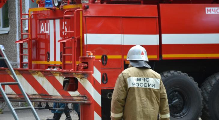 Пожар в Марий Эл: мама с дочкой не смогли справиться с пламенем