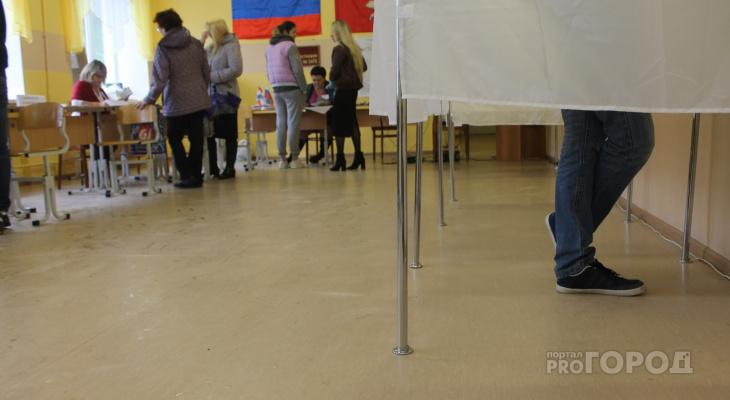 Итоги голосования: жители Марий Эл решили поддержать самовыдвиженцев