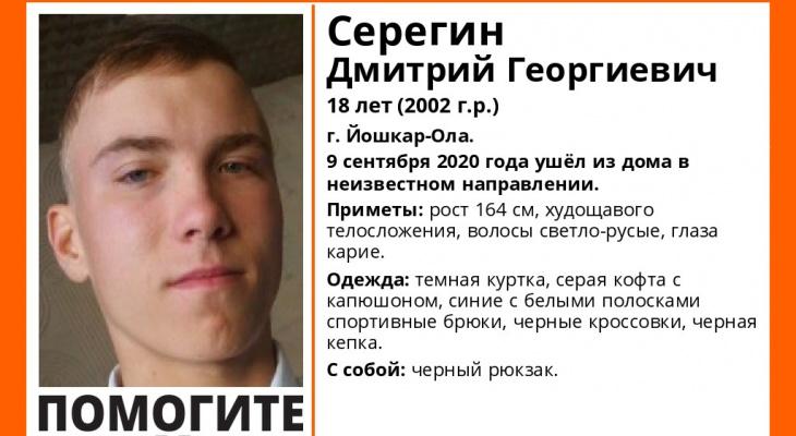 Йошкаролинец вышел из дома в начале сентября и до сих пор не вернулся
