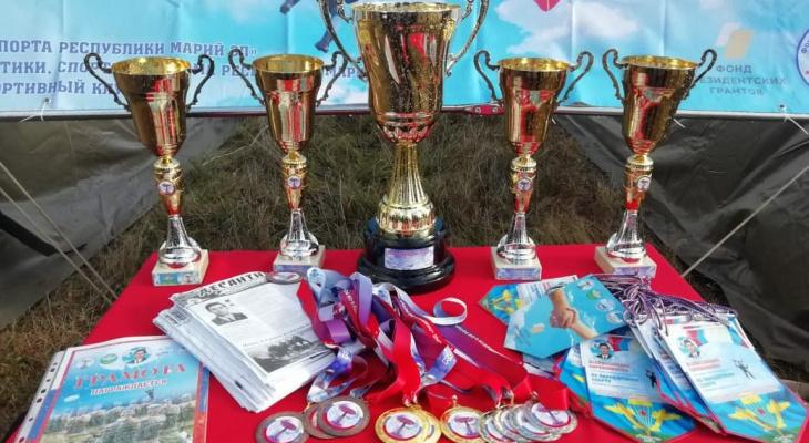 Парашютисты из Марий Эл взяли «золото» на всероссийском соревновании