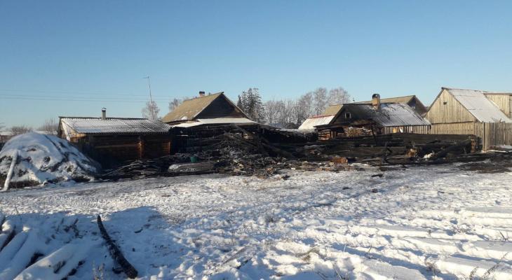 В Марий Эл в пожаре заживо сгорели домашние животные