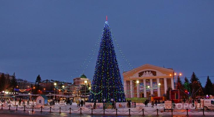 В Йошкар-Оле устанавливают елку: три интересных факта о главном новогоднем атрибуте нашего города