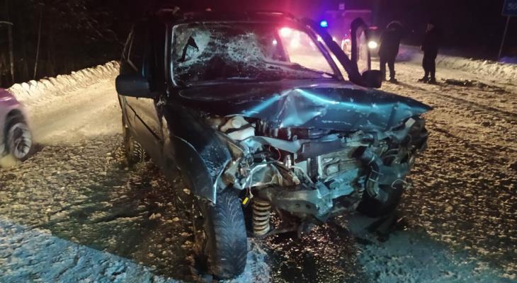 В Марий Эл в результате ДТП погибло два человека