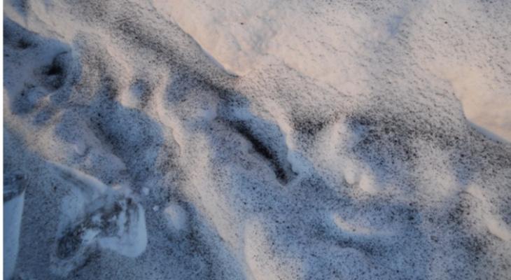 Эколог рассказал, чем может быть опасен черный снег в одном из поселков Марий Эл