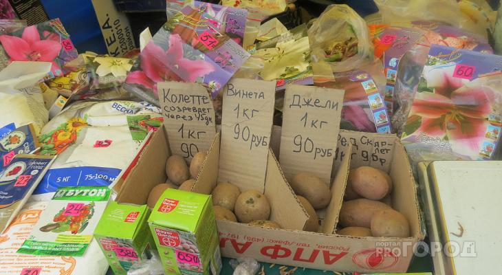 Цены на продукты первой необходимости подорожали более, чем на треть
