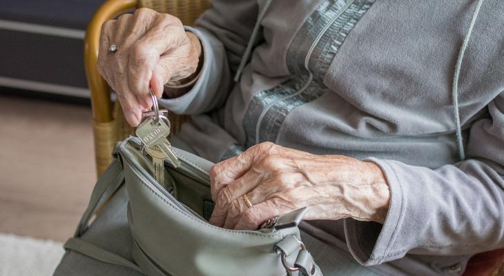 Жительница Марий Эл обокрала пенсионерку и пропила деньги