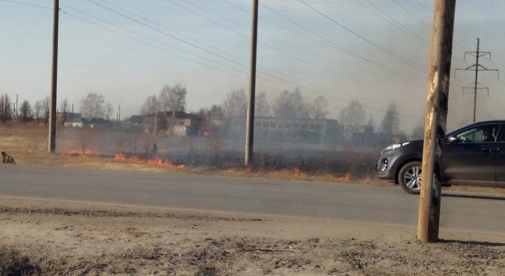 Пожарные в Йошкар-Оле тушили загоревшееся поле сухой травы