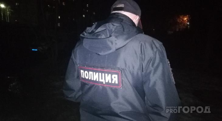 В Йошкар-Оле сотрудники Госавтоинспекции поймали вора