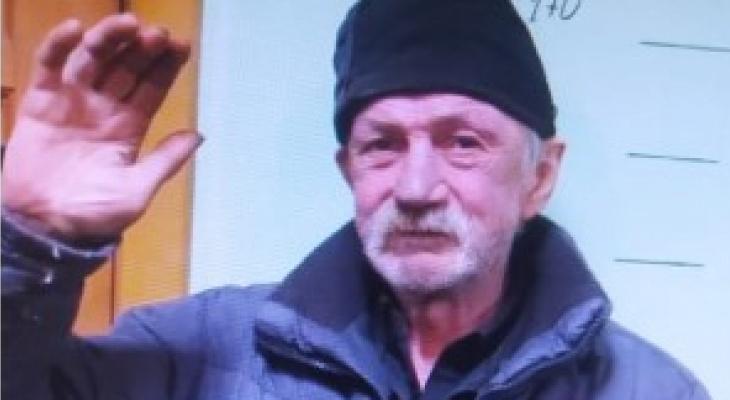 В Йошкар-Оле ищут седого мужчину, пропавшего две недели назад