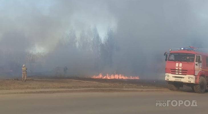 В Марий Эл рядом с пилорамой горит лес