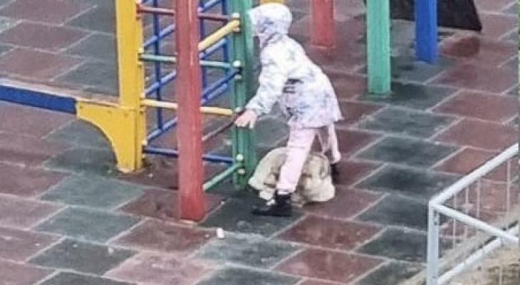 В Йошкар-Оле девочка закрыла собой собаку от дождя