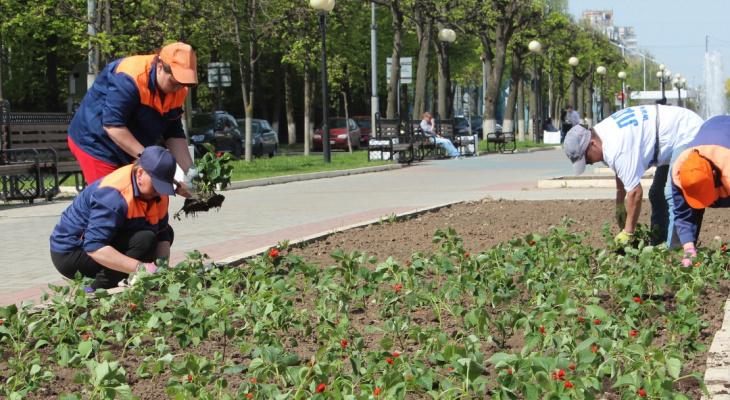 Администрация Йошкар-Олы вплотную занялась благоустройством и озеленением города