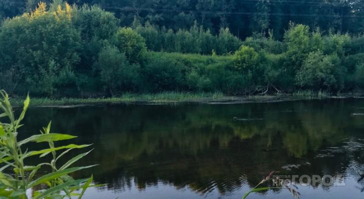 Жителям Марий Эл, которые не хотят платить за подход к озеру, предлагают прорубаться через «джунгли»
