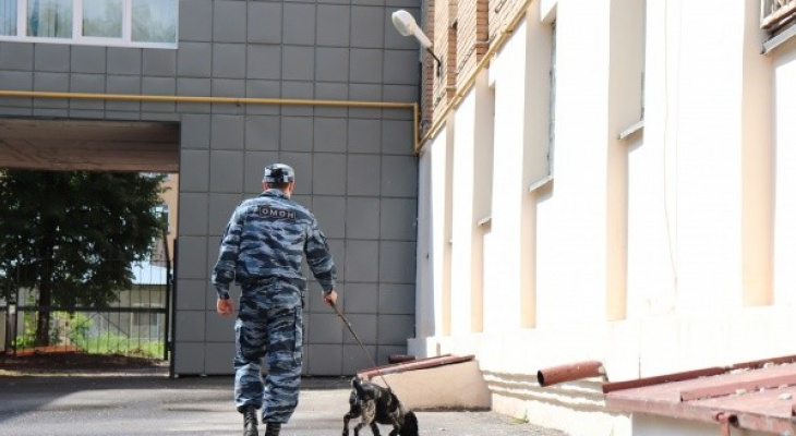 Жителя Марий Эл обвинили в участии в незаконном обороте оружия