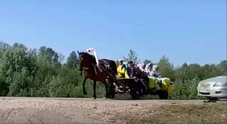 Иномарка влетела в повозку с людьми: в Сети появилось видео с места аварии